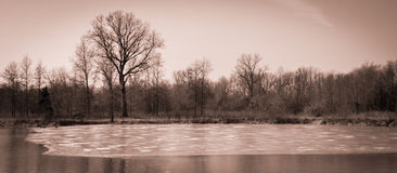 Szenische Landschaft nahe Edwardsville Illinois Lizenzfreies Stockfoto