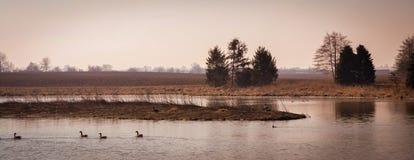 Szenische Landschaft nahe Edwardsville Illinois Lizenzfreie Stockbilder