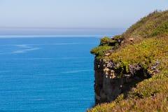 Szenische Meerblickansicht mit Klippen und Natur an der K?ste von Meer oder von Ozean lizenzfreie stockbilder