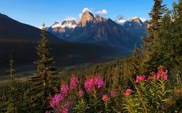 Szenische Naturlandschaft in Kanada Stockfotografie