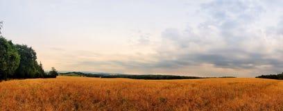 Szenische Panoramaansicht von Naturlandschaft unter einem bewölkten Himmel stockbild