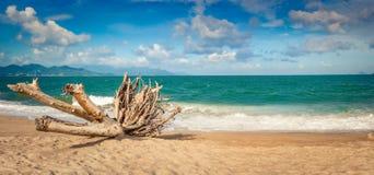 Szenische schöne Ansicht von Strand Nha Trang Panorama stockfotos