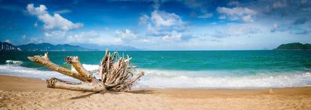 Szenische schöne Ansicht von Strand Nha Trang Panorama lizenzfreie stockfotos
