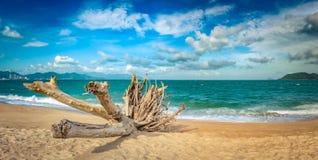 Szenische schöne Ansicht von Strand Nha Trang Panorama lizenzfreies stockfoto