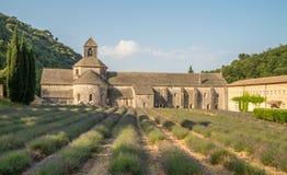 Szenische Senanque-Abtei und blühendes Lavendelfeld in Provence-Region von Frankreich Lizenzfreie Stockbilder