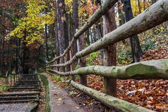 Szenische Steintreppe unter rostigem Farblaub Lizenzfreie Stockfotos