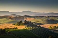 Szenische Toskana-Landschaft im goldenen Morgenlicht Stockbilder