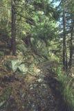 szenische und schöne Tourismusspur im Park Slovensky-raj, SL Stockbild