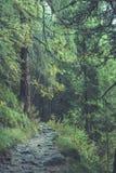 szenische und schöne Tourismusspur im Park Slovensky-raj, SL Stockfoto