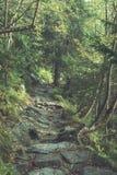 szenische und schöne Tourismusspur im Park Slovensky-raj, SL Stockfotos