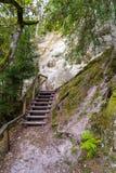 Szenische und schöne Tourismusspur im Wald nahe Fluss Stockfoto
