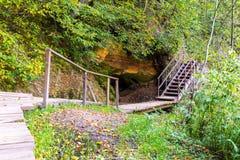Szenische und schöne Tourismusspur im Wald nahe Fluss Stockbild