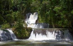 Szenische Wasserfälle und üppige Vegetation in Jamaika stockfotografie