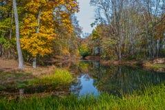 Szenischer Autumn Pond Stockbild