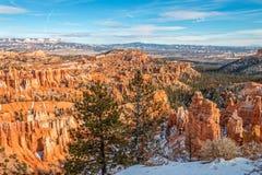 Szenischer Bryce Canyon Winter Landscape Lizenzfreie Stockbilder