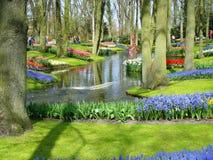 Szenischer Garten mit Frühlingsblumen und -teich Stockfotografie