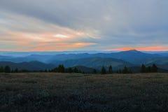 Szenischer Gebirgshimmelbäume horizont Sommerabend Stockfotografie