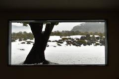 Szenischer japanischer Garten vom Fenster Stockfoto