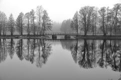 Szenischer nebeliger See im Winter Stockfotos