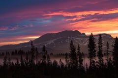 Szenischer Sonnenaufgang, Madison River, Wyoming Montana stockfotos