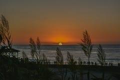 Szenischer Sonnenuntergang mit schönem hohem Gras in der Front und Leuten im Pier lizenzfreie stockfotos