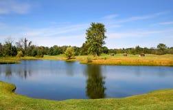 Szenischer Teich in einem Golfplatz Stockfotografie