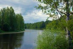 Szenischer Wald und Fluss Stockfotos