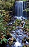Szenischer Wasserfall stockbilder