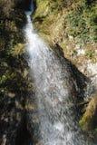 Szenischer Wasserfall im Wald Stockfotos