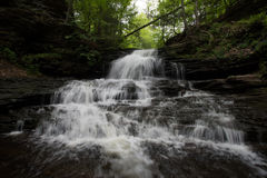 Szenischer Wasserfall in Ricketts Glen State Park im Poconos in P stockfotos