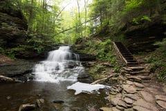 Szenischer Wasserfall in Ricketts Glen State Park im Poconos in P Stockfoto