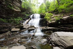 Szenischer Wasserfall in Ricketts Glen State Park im Poconos in P Lizenzfreie Stockbilder
