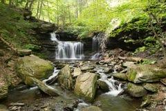 Szenischer Wasserfall in Ricketts Glen State Park im Poconos in P Stockfotografie