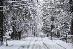 Szenischer Winter-Hintergrund Lake Tahoe Lizenzfreies Stockfoto