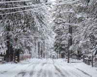 Szenischer Winter-Hintergrund Lake Tahoe Stockfotografie