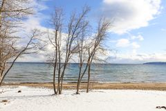 Szenischer Winter-Hintergrund Lake Tahoe stockfotos