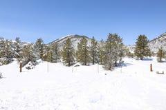 Szenischer Winter-Hintergrund Lake Tahoe Stockfoto