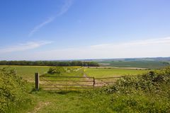 Szenisches Ackerland der Yorkshire-Wolds in England Lizenzfreie Stockfotografie