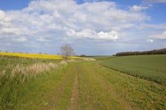 Szenisches bridleway in den Yorkshire-Wolds Stockfotos