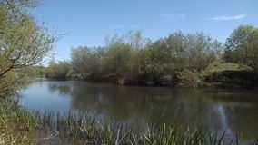 Szenisches Fluss nr Crookham, Northumberland Großbritannien stock video