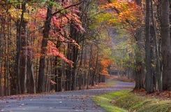 Szenisches Herbstlaufwerk lizenzfreie stockbilder