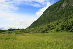 Szenisches Valdez Alaska Stockbilder