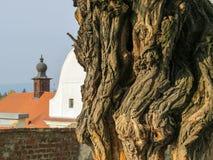 Szentendre, pequeña ciudad en la Hungría Imagen de archivo libre de regalías