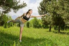 szereg fizycznych fitness Fotografia Stock