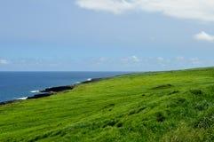 Szerocy pola hawajczyka krajobraz Obrazy Stock