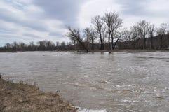 Szeroka rzeka w wiośnie Obraz Stock