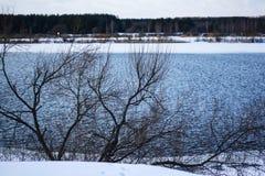 Szeroka rzeka w zima lesie obraz royalty free