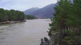 Szeroka rzeka z szybkim przepływem przeciw tłu góry i lasy wzdłuż banków zbiory