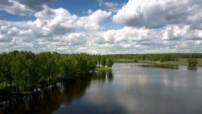 Szeroka spokojna rzeka odbija zielonego drzewo sylwetek wierzchu widok zdjęcie wideo