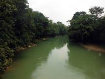 Szeroka Szmaragdowa Cahabon rzeka Przez lasu w Semuc Champey zdjęcia royalty free
